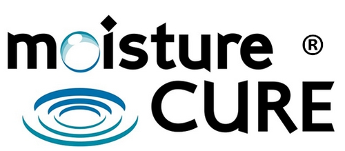 Holistic SEO testimonial: moisturecurer